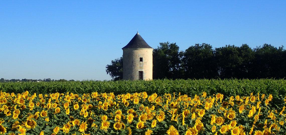 Château de Crain, au coeur de la nature